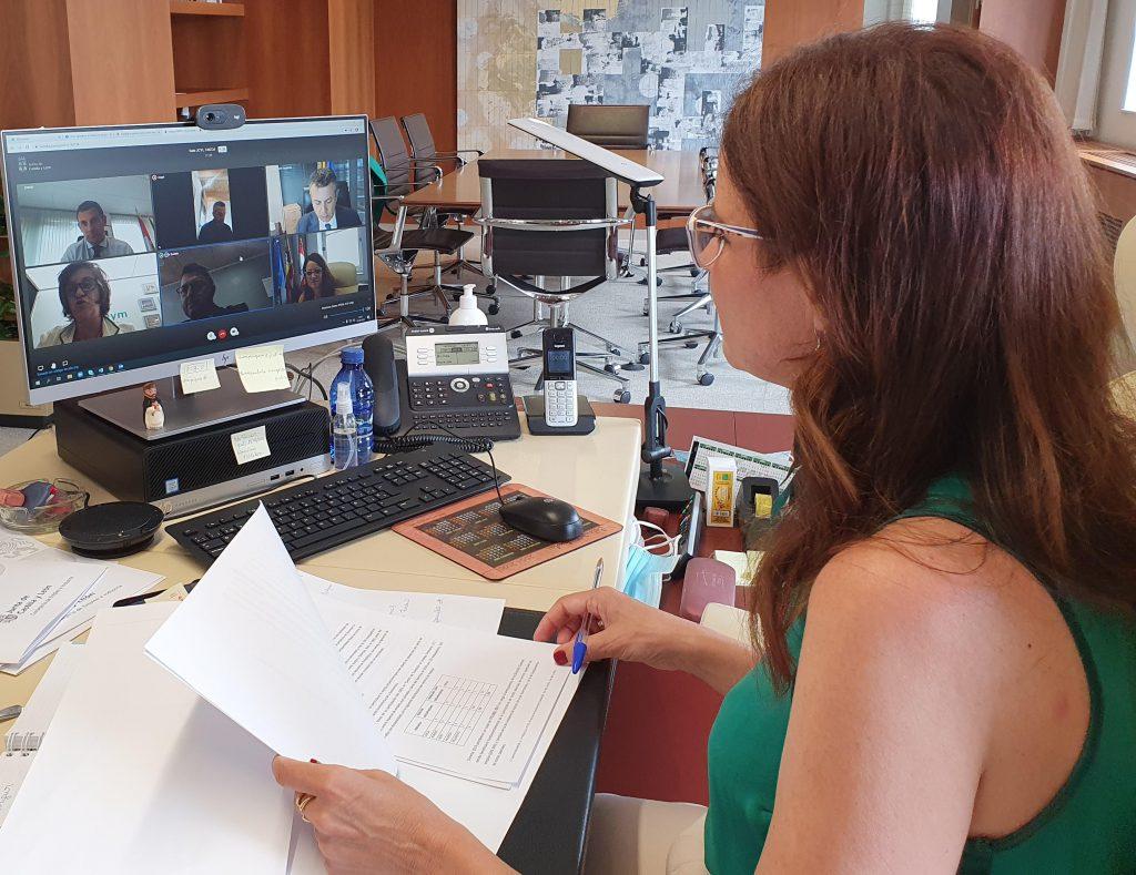 La Consejera de Empleo en una reunión virtual con miembros de ASPAYM CYL