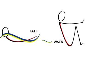 Curso básico WATER SPECIFIC THERAPY en Neurología, integrado de pediatría y adultos